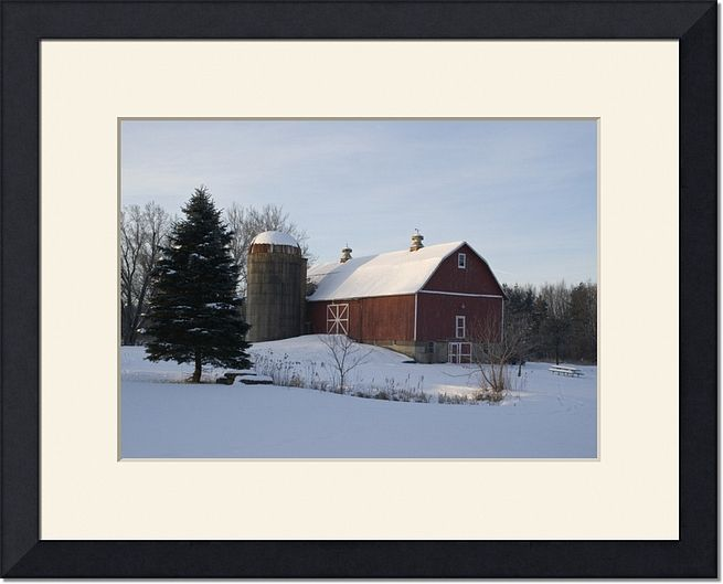 Winter Snow Covered Barn and Pine Tree Farm Photography Print