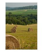 Countryside Hay Bales Poster Print